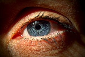 Read more about the article Red eyes, should I leave it or treat it?